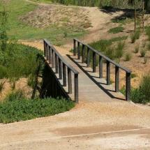 HardWood Bridge